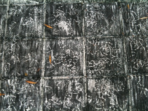 Sound of charcoal, White Square Project in Berlin 2014. Charcoal drawing in the park, charcoal made of the fallen and found branches.