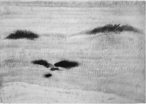 Written landscape III, 2010. Charcoal on paper. 50 x 70 cm. Privat collection.
